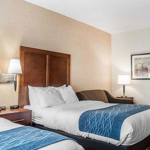 Comfort Inn Amp Suites Hamburg NY