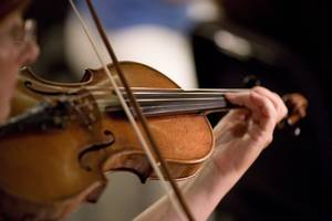 orchestra, symphony, music, classical, live, performance, violin