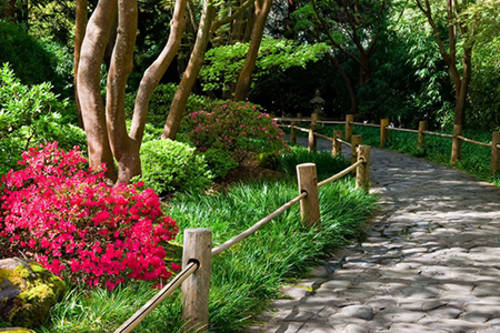 Japanese Tea Garden San Francisco Ca Aaa Com