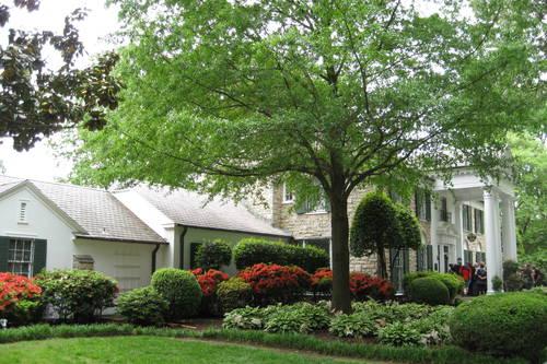 Graceland Mansion Tour Discounts