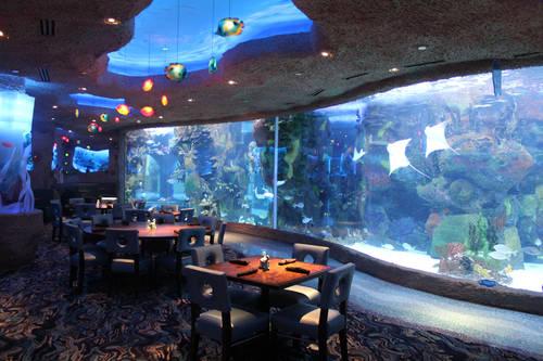 Aquarium Restaurant Nashville Tn Aaa Com