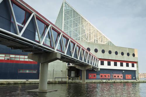 National Aquarium - Baltimore MD | AAA.com